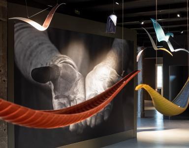 Murano Showroom
